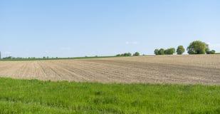 Sonnige landwirtschaftliche Landschaft Lizenzfreies Stockfoto