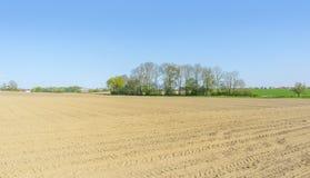 Sonnige landwirtschaftliche Landschaft Stockfotografie