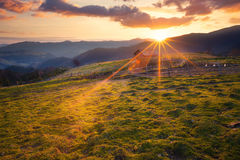 Sonnige Morgengebirgsländliche Landschaft Stockbild