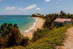 Sonnige tropische karibische Strand-Landschaft stockfotos