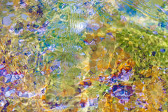Sonniger abstrakter grüner Naturhintergrund, selektiver Fokus Stockfotos