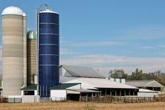 Sonniger Bauernhof mit Silos Stockfoto