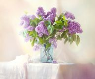 Sonniger Blumenstrauß von Fliedern auf dem Tisch am Fenster Lizenzfreie Stockfotografie