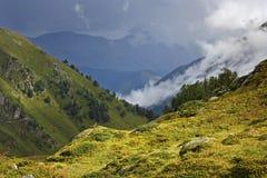 Sonniger Abhang unter Nebel und bewölkten Bergen Lizenzfreie Stockfotos