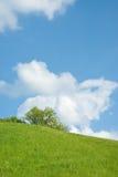 Sonniger Hügel Lizenzfreies Stockbild