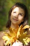 Sonniger Herbst Lizenzfreies Stockfoto