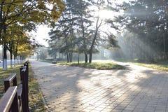 Sonniger Herbstmorgen Stockfotos