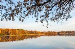 Sonniger Herbsttag stockbilder
