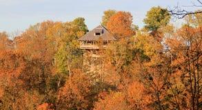 Sonniger Herbstwald mit Turm Lizenzfreie Stockfotos