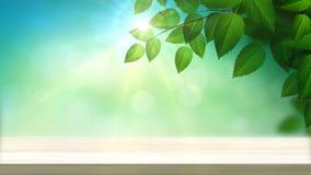 Sonniger Hintergrund mit Tabelle und natürliche Niederlassung mit grünen Blättern auf dem Wald mit sunlights vektor abbildung