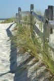 Sonniger Küste-Zaun Stockbild