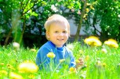 Sonniger kleiner blonder Junge auf Frühlingsgras Stockfoto