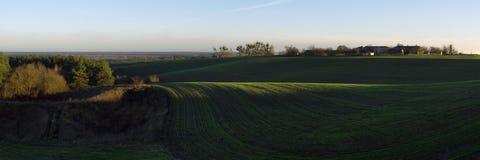 Sonniger Morgen im Ackerland Stockbild