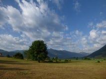 Sonniger Morgen in Montenegro-` s Bergen, Lakeviews-Lager Lizenzfreie Stockbilder