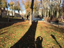 Sonniger Park Lizenzfreies Stockfoto