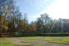 Sonniger schöner Tag im Park Stockbild
