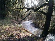 Sonniger Tag alten Flussturner-Nebenflusses Stockfoto