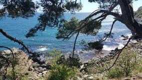 Sonniger Tag auf dem Meer stockbild