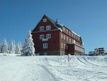 Sonniger Tag auf frischem Schnee lizenzfreie stockbilder