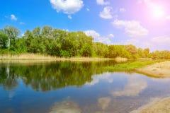Sonniger Tag des Frühlinges auf der Flussbank Stockfotografie
