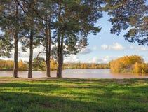 Sonniger Tag des Herbstes im Park Stockfoto