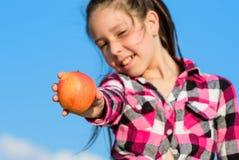 Sonniger Tag des reifen Apfels des Kindergriffs Gesundes Nahrungkonzept Kind essen reife Apfelfallernte Frucht-Vitaminnahrung für stockbild