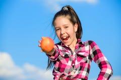 Sonniger Tag des reifen Apfels des Kindergriffs Kindermädchen mit dem langen Haar essen Hintergrund des blauen Himmels des Apfels lizenzfreie stockbilder
