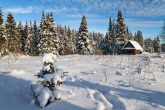 Sonniger Tag des Winters Lizenzfreie Stockbilder