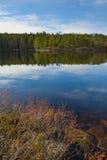 Sonniger Tag im Nationalpark Lizenzfreie Stockfotografie