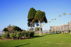 Sonniger Tag in La Jolla, CA Lizenzfreies Stockbild