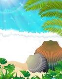 Sonniger tropischer Strand Stockfoto