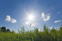 Sonniger warmer Sommerhimmel lizenzfreies stockfoto