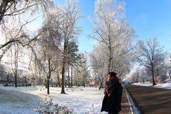 Sonniger Wintertag lizenzfreie stockbilder