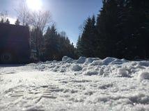 Sonniger Wintertag Stockfotografie