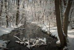Sonniger Wintertag lizenzfreies stockbild