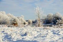 Sonniger Wintertag auf dem Fluss Stockbild