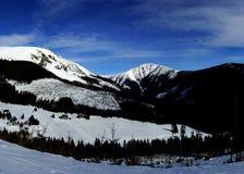 Sonniger Wintertag in den riesigen Bergen (panoram) lizenzfreies stockfoto