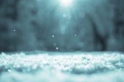 Sonniger Winterweihnachtshintergrund mit Schneewehe auf einem Vordergrund und unscharfer Waldlandschaft auf einem Hintergrund stockfotografie
