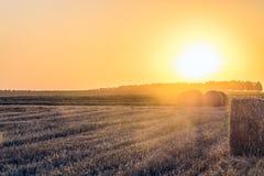Sonniges Feld des Abendsommers mit Strohballen Ackerland mit Heurollen Lizenzfreies Stockfoto