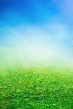 Sonniges Feld des Frühlinges Lizenzfreies Stockbild