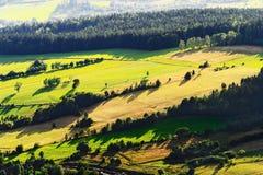 Sonniges Gebirgstal mit Grünfeldern und -wiesen Szenische Ackerlandlandschaftsvogelperspektive Lizenzfreie Stockfotos