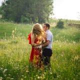 Sonniges Porträt im Freien der glücklichen lächelnden Paare, die auf der blühenden Wiese umarmen Der Wind befördert die gelockte  Stockbild