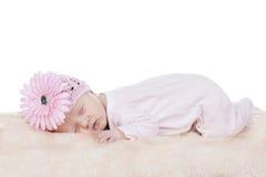 Sonno del cappello di rosa di bambino Immagini Stock