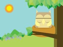 Sonno del gufo sul nido Fotografia Stock