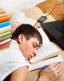 Sonno dello studente con libri Fotografia Stock