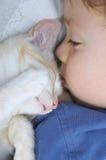 sonno di quattro anni del gatto e del ragazzo Fotografia Stock Libera da Diritti