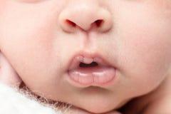 Sonno neonato delle labbra del primo piano sul fondo leggero, vita reale, Fotografia Stock Libera da Diritti