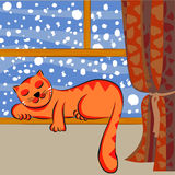 Sonno sveglio del gatto Fotografie Stock Libere da Diritti