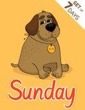 Sonntag Stockbilder