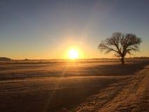 Sonntags-Sonnenaufgang in Waco Stockbilder